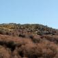 """Отново """"Крив камик"""" а върха, не е връх всъщност но е близо до Селимица"""
