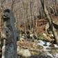 Кръст по пътя към Селимица, Витоша